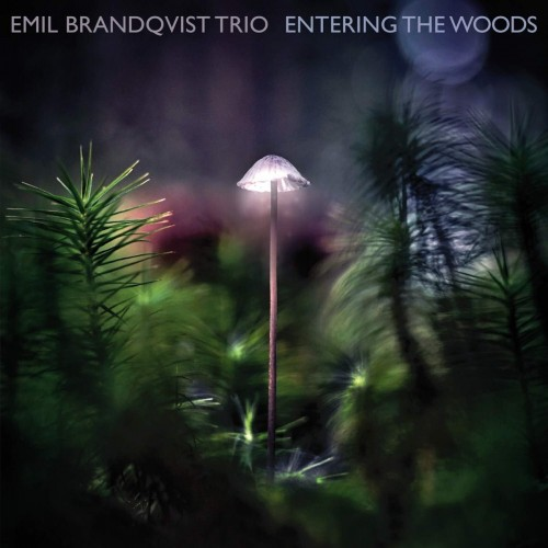 Emil Brandqvist Trio - Entering The Woods (CD)