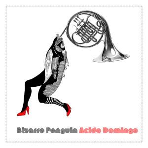 Bizarre Penguin - Acido Domingo [CD]