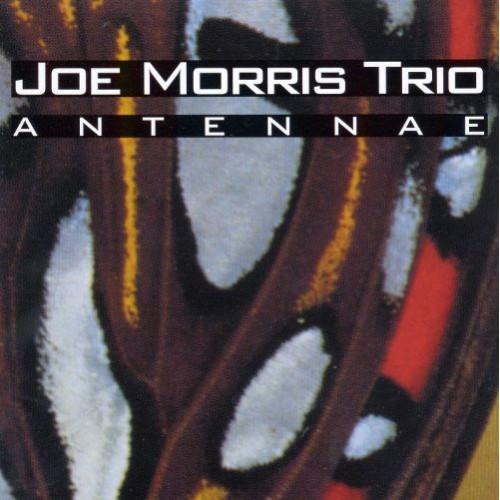 Joe Morris Trio - ANTENNAE