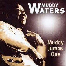 Muddy Waters - MUDDY JUMPS ONE