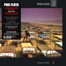 Pink Floyd - A MOMENTARY LAPSE OF REASON [180g/LP]