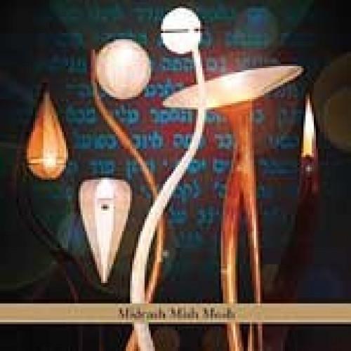 Aaron Alexander - MIDRASH MISH MOSH